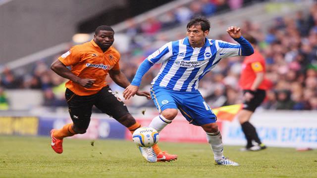 Agen Judi Brington Hove Albion vs Wolverhampton Wanderers